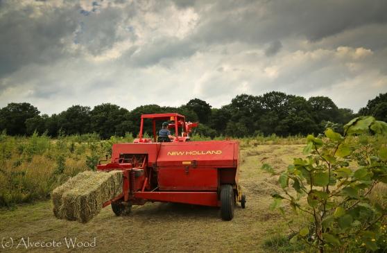 Baling the hay