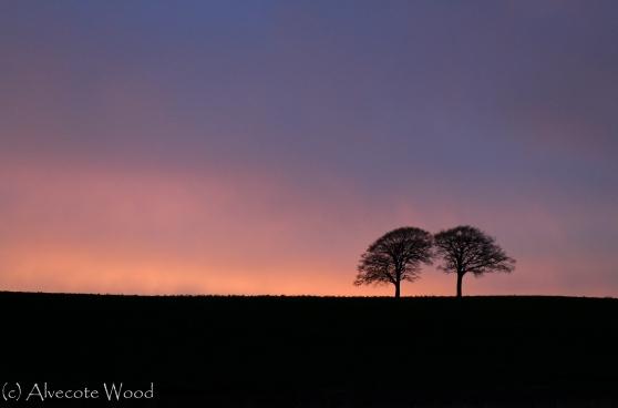 Gentle warm sunset sky